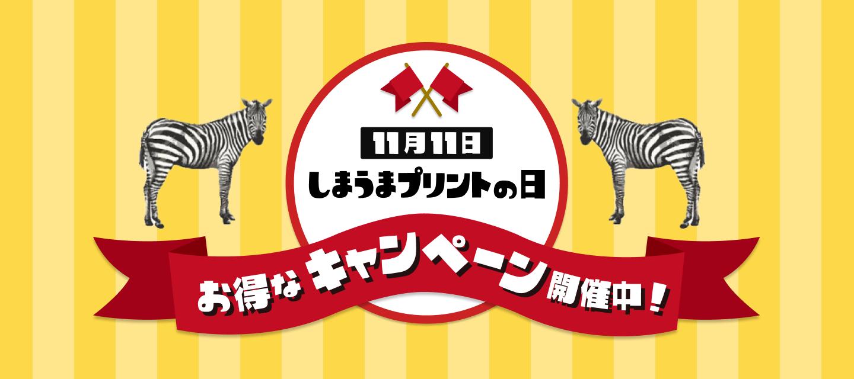 11月11日は『しまうまプリントの日』お得なキャンペーン開催中!