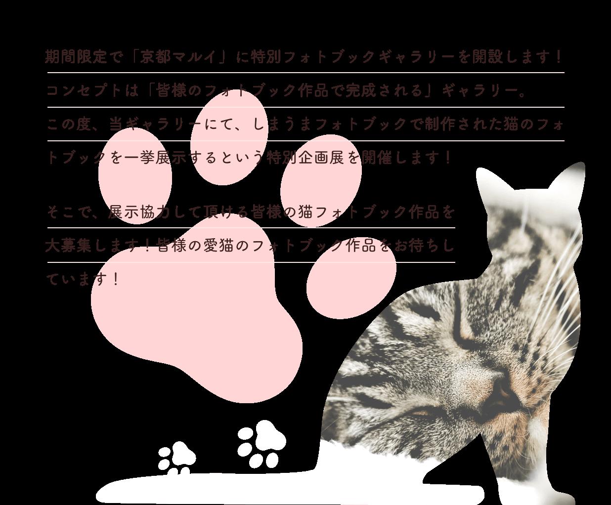 期間限定で「京都マルイ」に特別フォトブックギャラリーを開設します!