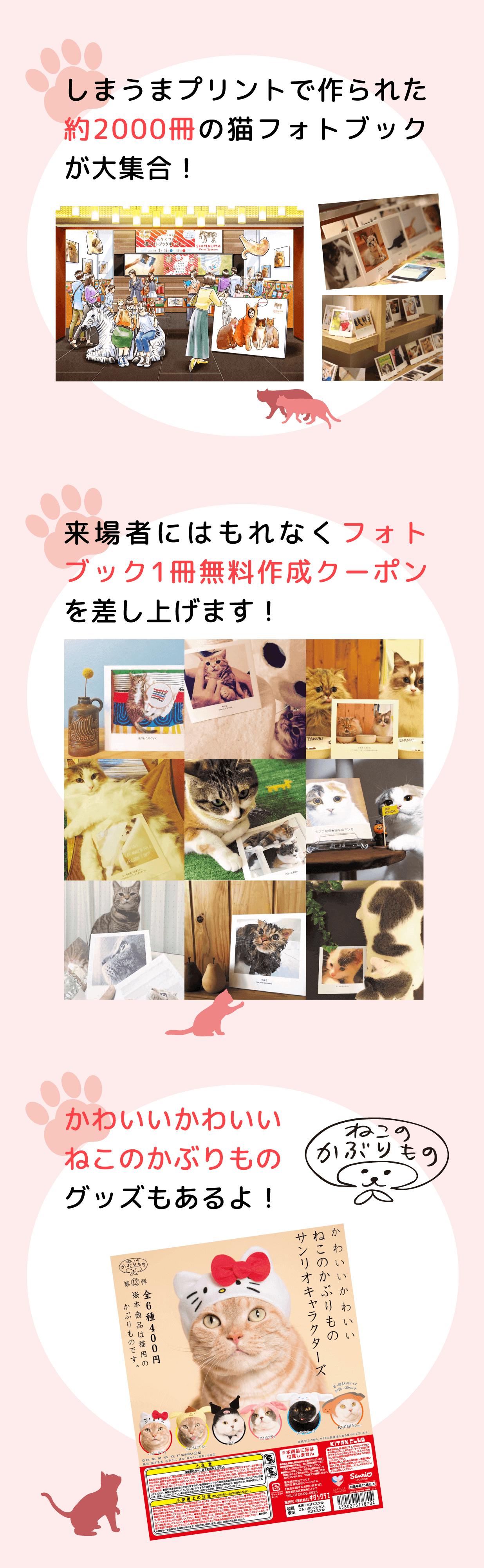 猫フォトブックが大集合!来場者にはもれなくフォトブック1冊無料クーポンを差し上げます。ねこのかぶりものグッズもあるよ!