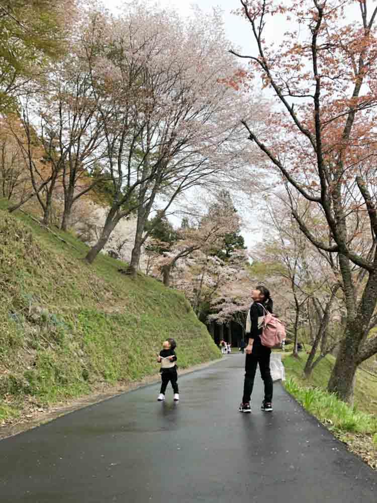 H.H.さん(奈良県)