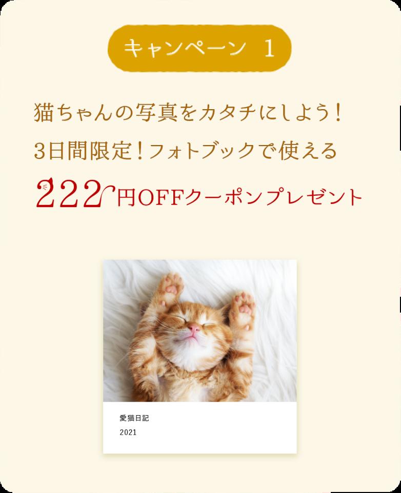キャンペーン1 222円OFFクーポンをプレゼント!